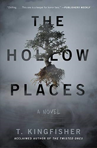 The Hollow PLaces - cover